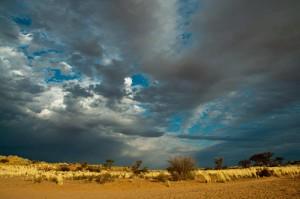 Kalahari-foto's1